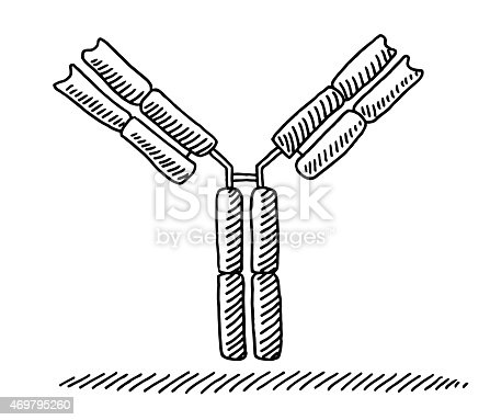 Hand-drawn Medical vector drawing of an Antibody. Black-and-White sketch on a transparent background (.eps-file). Included files are EPS (v10) and Hi-Res JPG.
