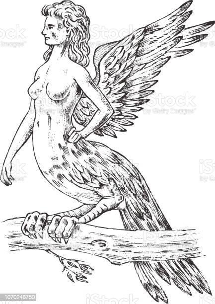 神話 怪物 ギリシャ