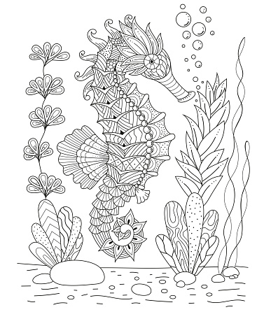 Antistress coloring book seahorse in the  style.