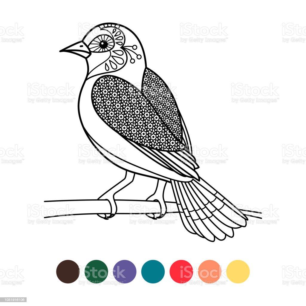 Antistress Coloriage Zentangle Oiseaux Vecteurs Libres De Droits Et