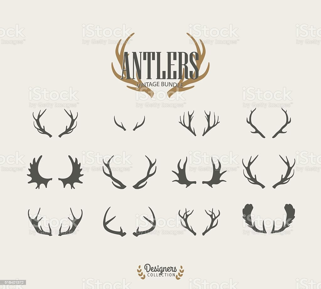 Antler collection vector art illustration