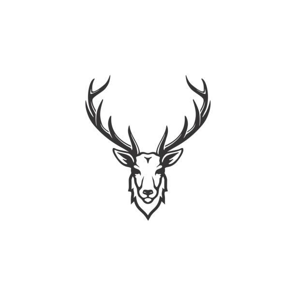geweih / jagd design inspiration - hirsch stock-grafiken, -clipart, -cartoons und -symbole