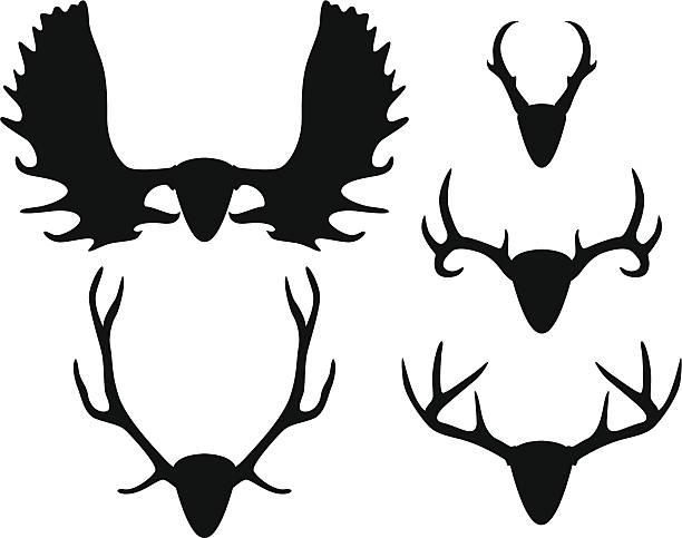 antler set - moose stock illustrations