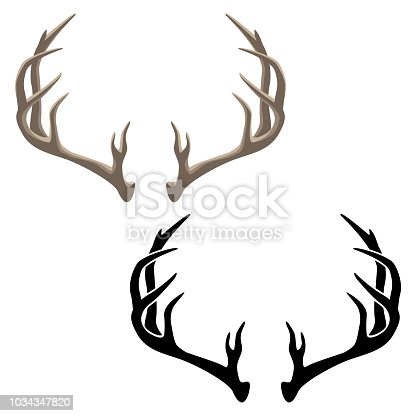 Very sharp clean illustration of deer antlers, in both color and black line art for easy editing