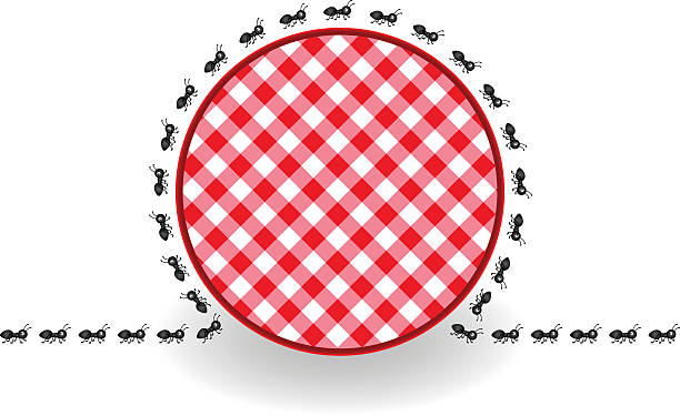 Ants around label picnic plaid vector art illustration