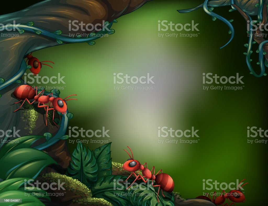 Ants at the rain forest royalty-free stock vector art