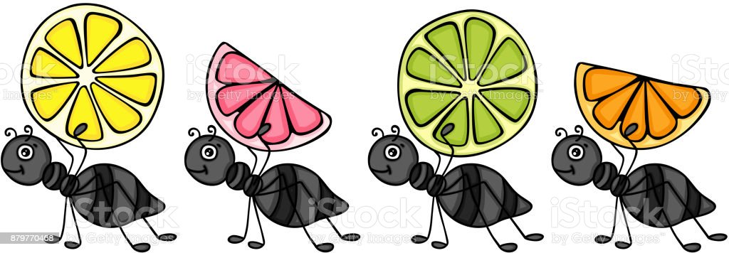 Ants Carrying Citrus Fruit Slices Stock Illustration Download Image Now Istock