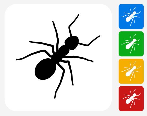 Ants Icon Flat Graphic Design vector art illustration