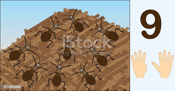 Ants. Number 9 (nine). Learning counting, mathematics. Education for kids. Vector illustration.
