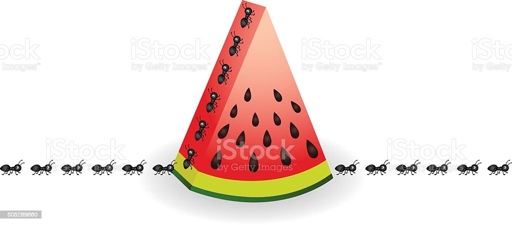 Ants on watermelon slice vector art illustration