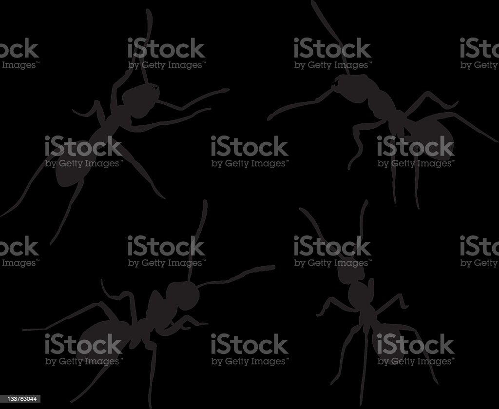 ants silhouettes vector art illustration