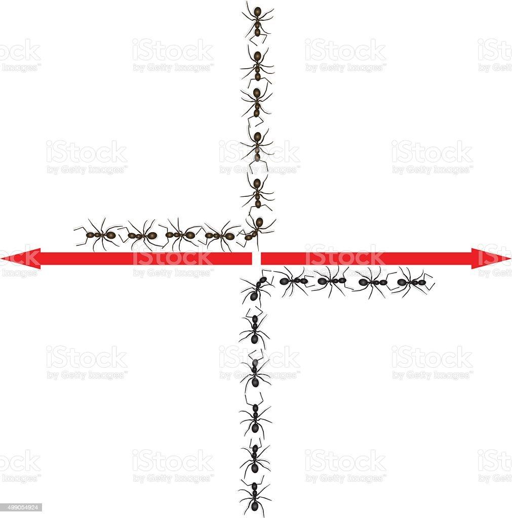 ants vector art illustration