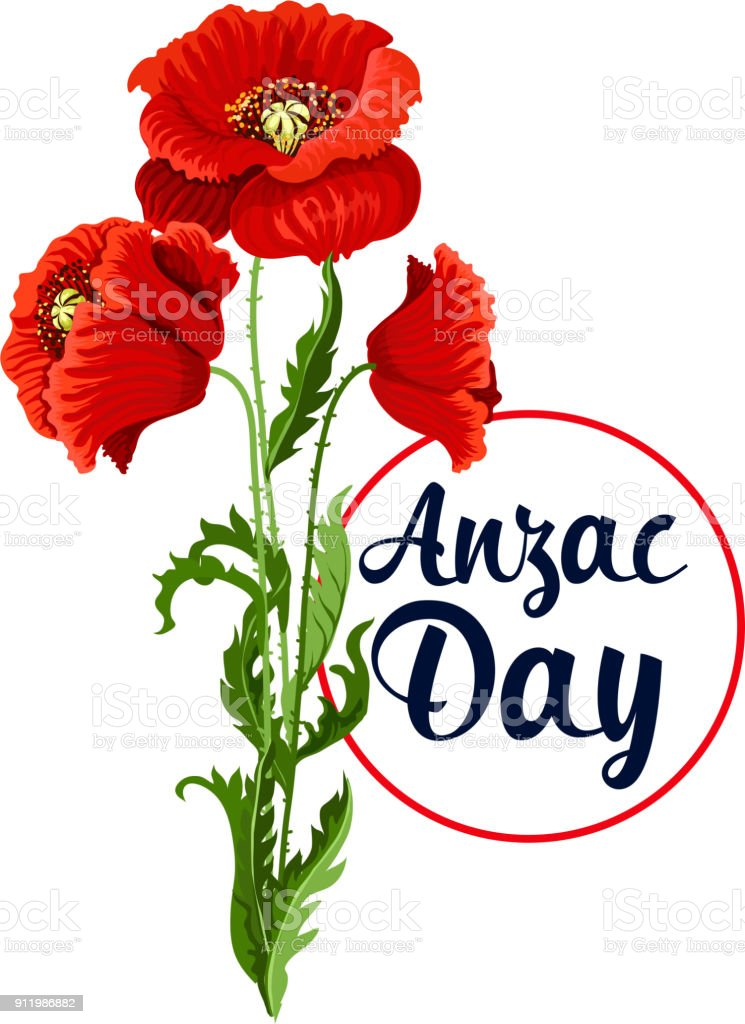 Anzac Day 25 April poppy bunch vector icon vector art illustration