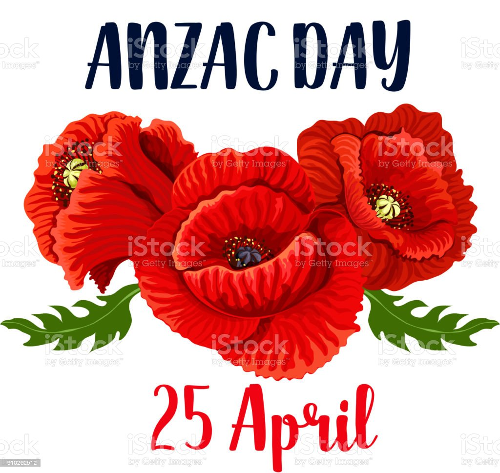 Anzac Day poppy vector 25 April Australian icon vector art illustration