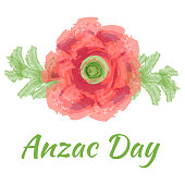 Anzac day Vector illustration of a bright poppy red flower. Remembrance day gallipoli memorial symbol card lest we forget