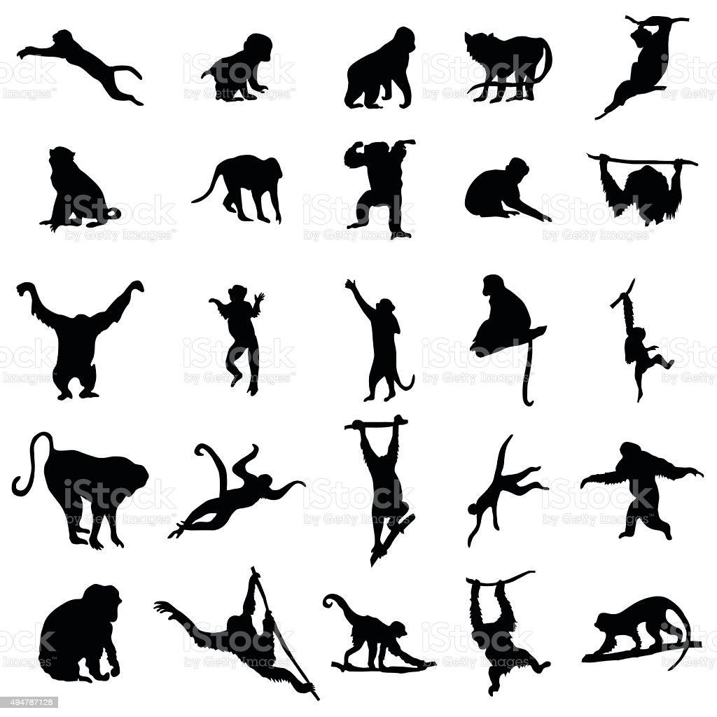 Menschenaffe und Affe-Kollektion – Vektorgrafik
