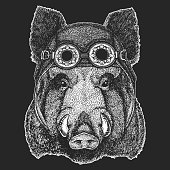 Aper, boar, hog, wild boaraper, boar, hog, wild boar Hand drawn image for t-shirt,  tattoo emblem badge logo patch