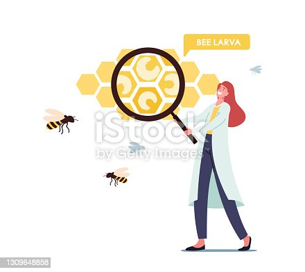 istock Apiary, Biology Science Concept. Tiny Scientist Character Wearing White Medical Labcoat with Huge Magnifying Glass 1309648858