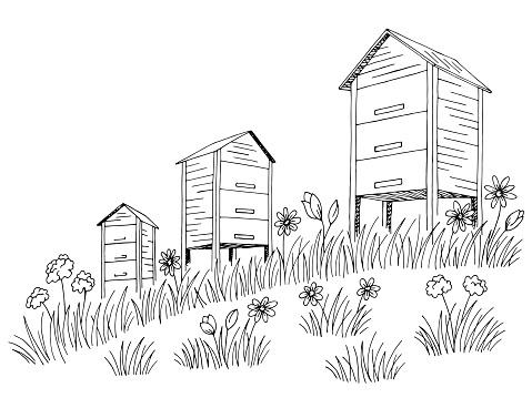 Apiary graphic black white landscape sketch illustration vector