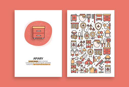 Apiary Related Design. Modern Vector Templates for Brochure, Cover, Flyer and Annual Report.
