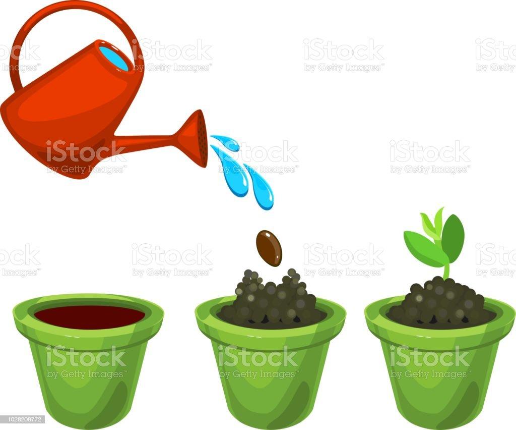 aussehen der grün sprießen in einen blumentopf nach pflanzen und