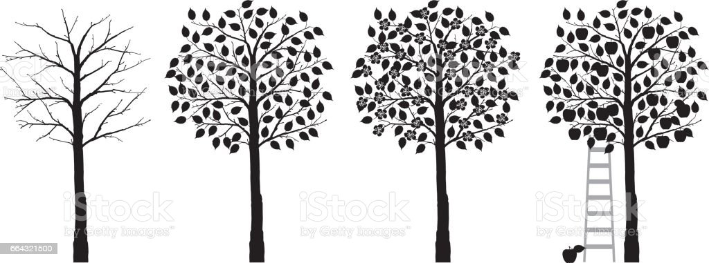 appelboom vier seizoenen vector art illustration