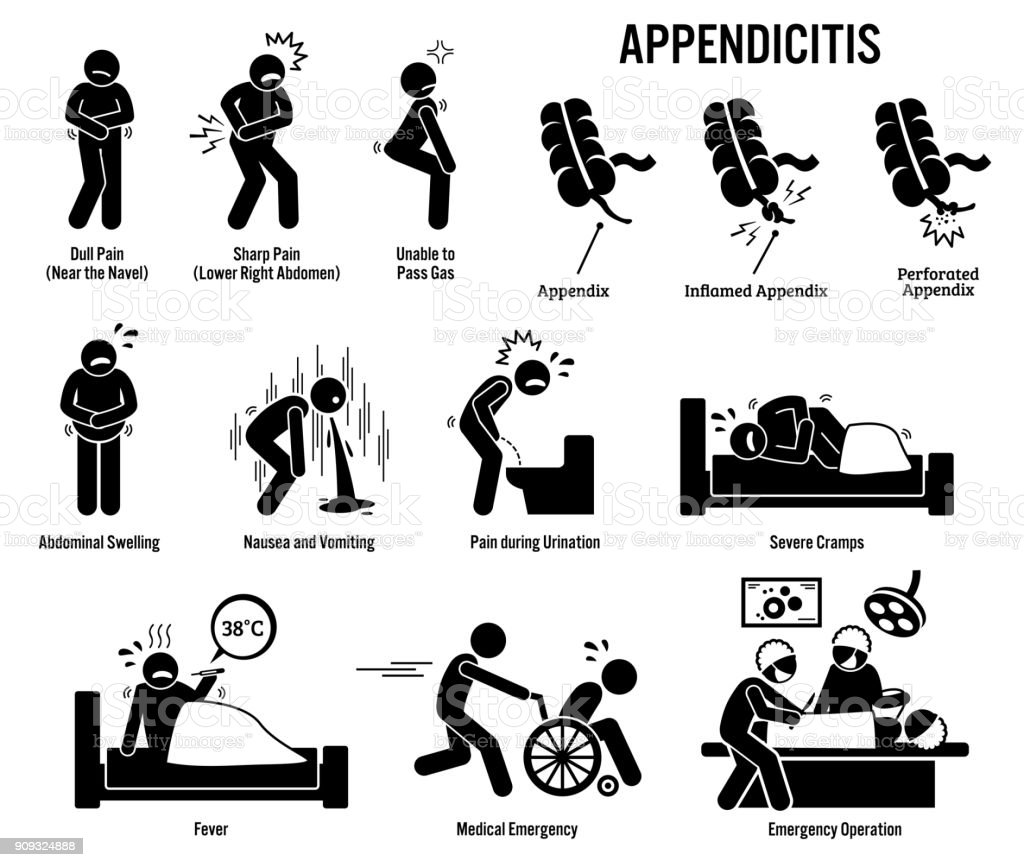 Appendix and Appendicitis Icons. vector art illustration