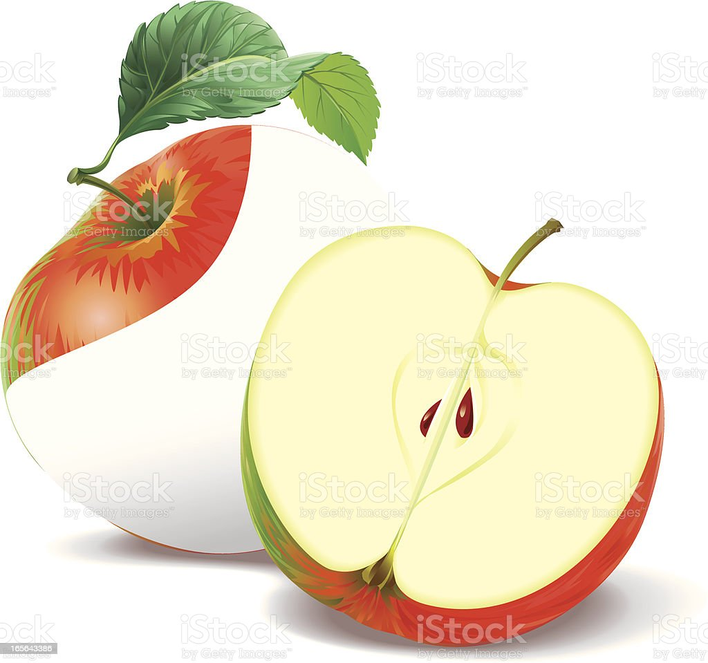 Apple and a half royalty-free stock vector art