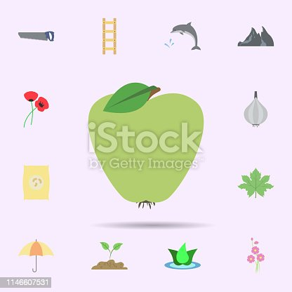 Apple colored icon. Universal set of nature for website design and development, app development on color background