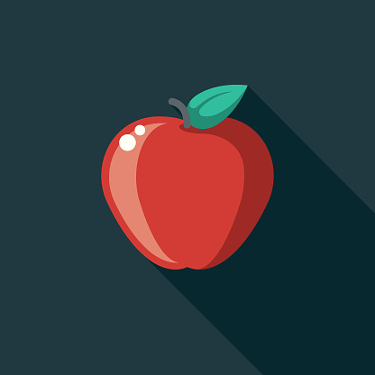 Apple Flat Design Education Icon with Side Shadow
