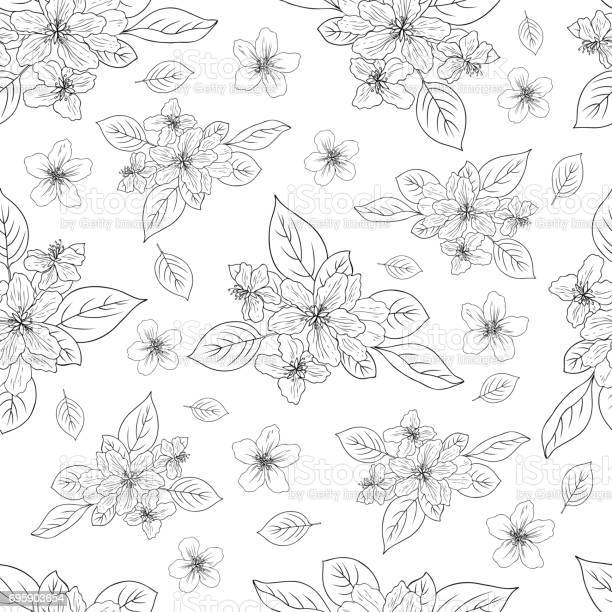 Apple flower blossom hand drawn isolated on white background seamless vector id695903654?b=1&k=6&m=695903654&s=612x612&h=e2pdsmvjaliwalzxdtf tkkwk7ikm vqjd1rqrnwc1e=