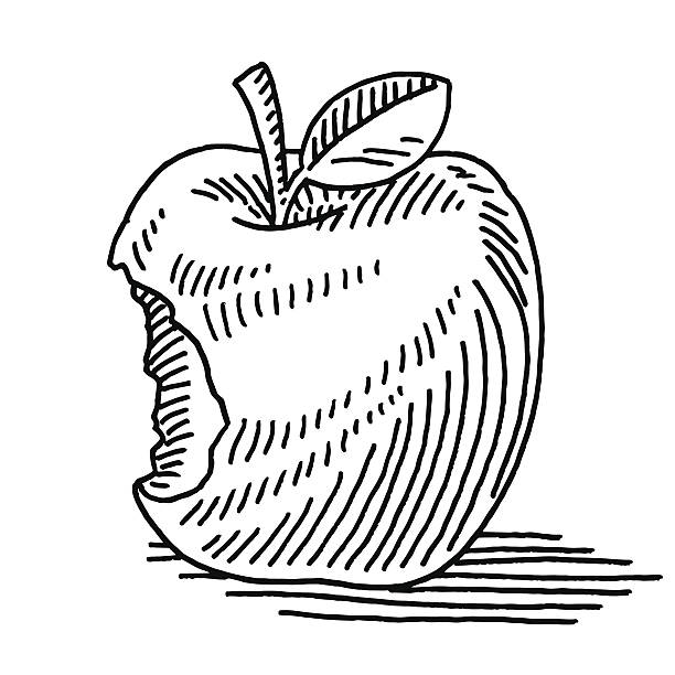 Apple Fruit Missing Bite Drawing Hand-drawn vector drawing of an Apple Fruit with a Missing Bite. Black-and-White sketch on a transparent background (.eps-file). Included files are EPS (v10) and Hi-Res JPG. environment stock illustrations
