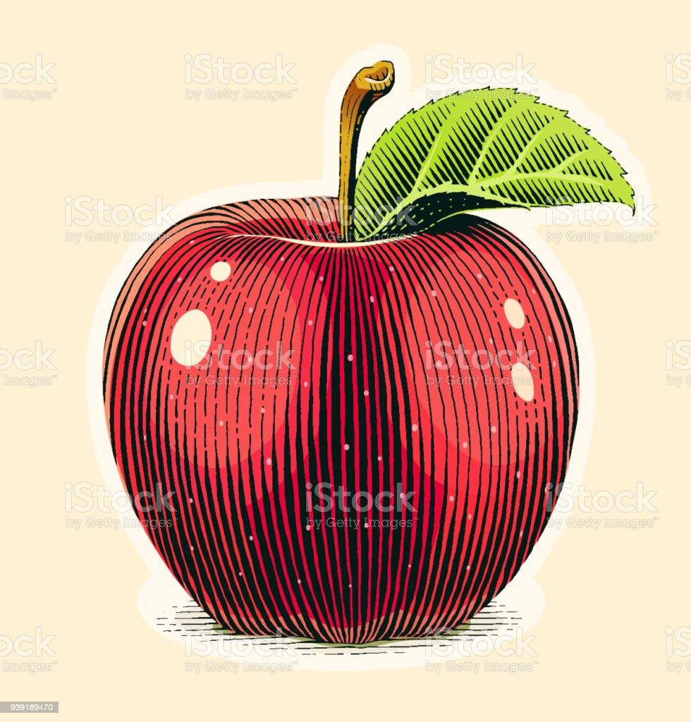 Apple fruit with green leaf. Scratch board style. vector art illustration