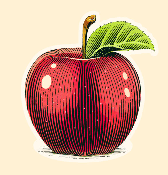 apple fruit with green leaf. scratch board style. - граттаж stock illustrations
