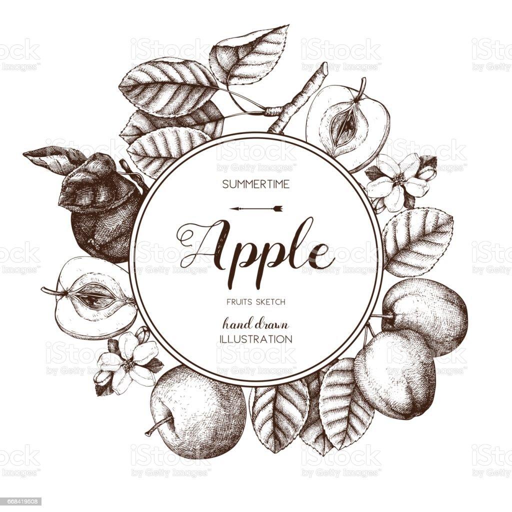 apple fruits design vector art illustration