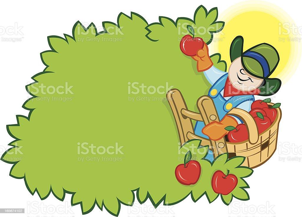 Apple Harvest - Farmer Picking from Tree vector art illustration