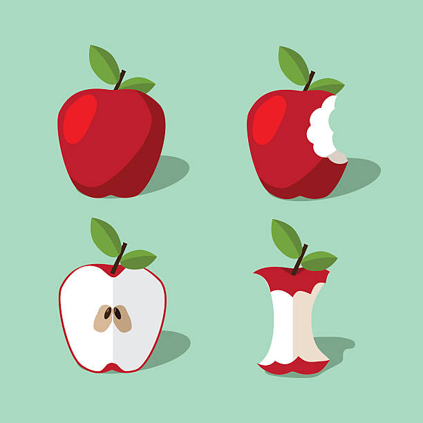 Apple icon collection. vector art illustration