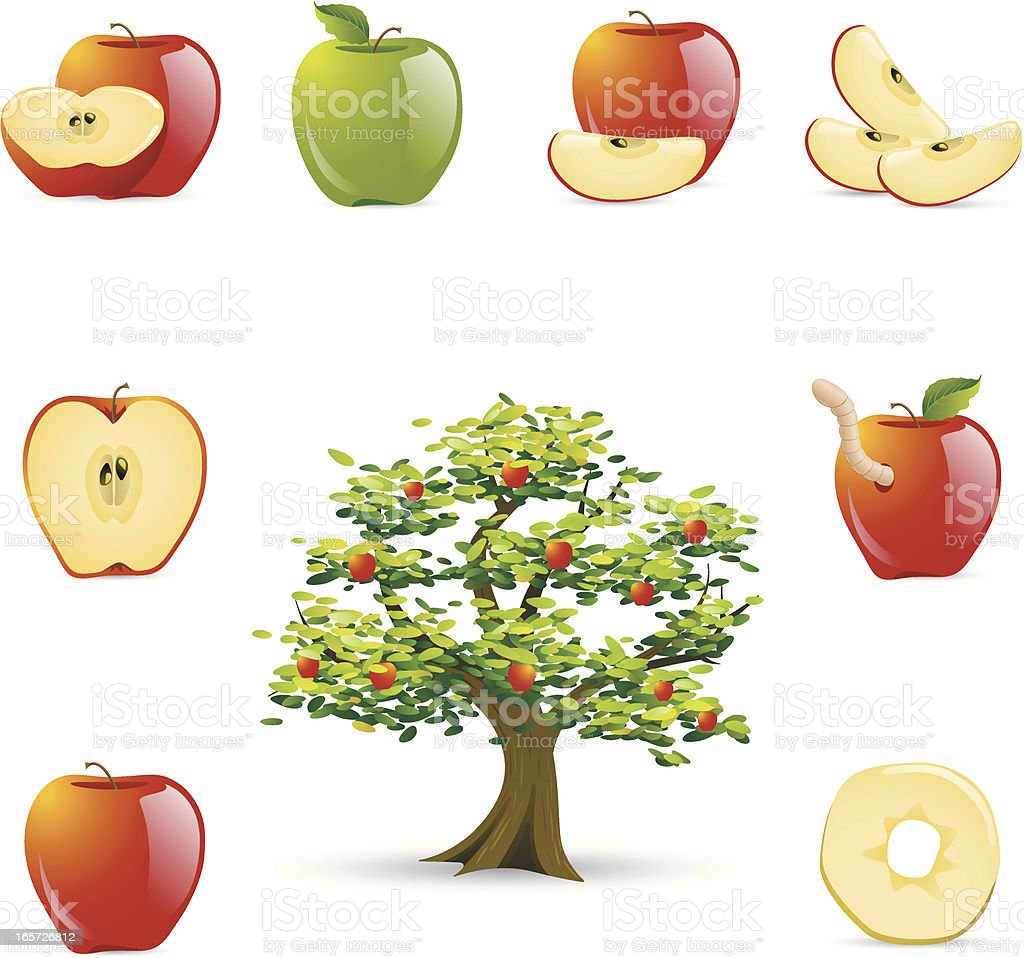 Apple Icons vector art illustration