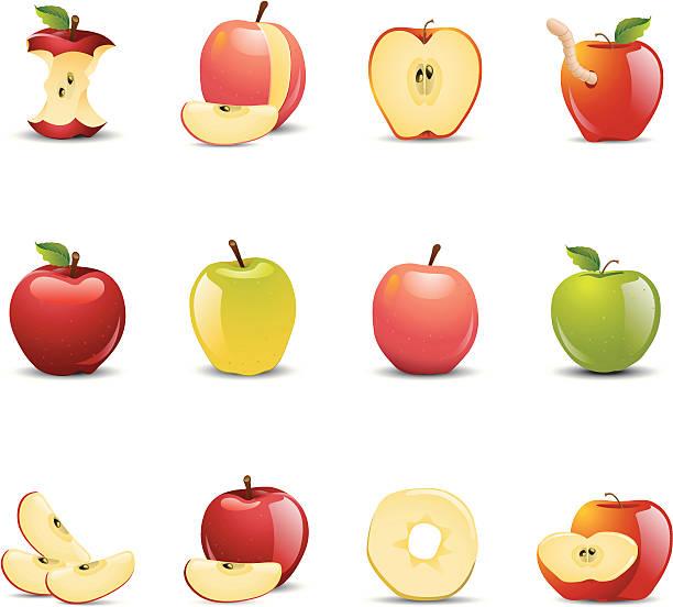 illustrazioni stock, clip art, cartoni animati e icone di tendenza di icone di apple - mela