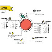 Apple - nutritional information. Healthy diet. Simple flat infographics with data on the quantities of vitamins, minerals, energy and more.