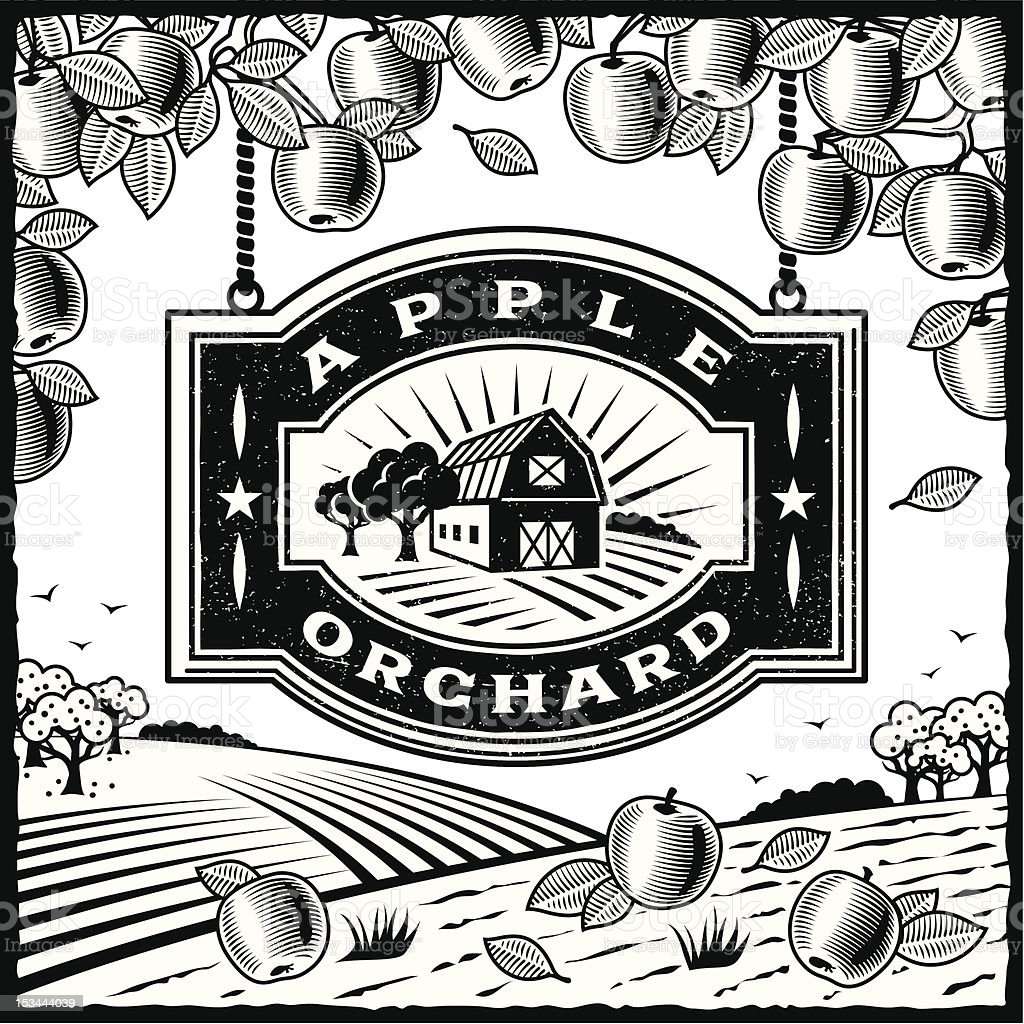 Apple Orchard black and white vector art illustration