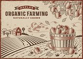 Vintage organic farming label on apple harvest landscape. Editable EPS10 vector illustration in woodcut style with clipping mask.