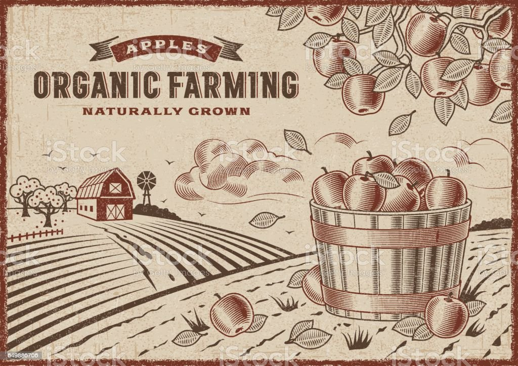 Apple Organic Farming Landscape vector art illustration