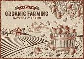 Apple Organic Farming Landscape