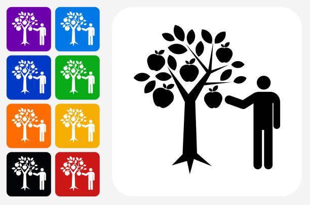 ilustrações de stock, clip art, desenhos animados e ícones de apple picking icon square button set - picking fruit