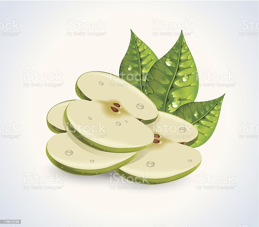 Apple Slices royalty-free stock vector art