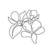 Spring apple tree blossom in continuous line art drawing style. Group of flowers with leaf black linear sketch isolated on white background. Vector illustration