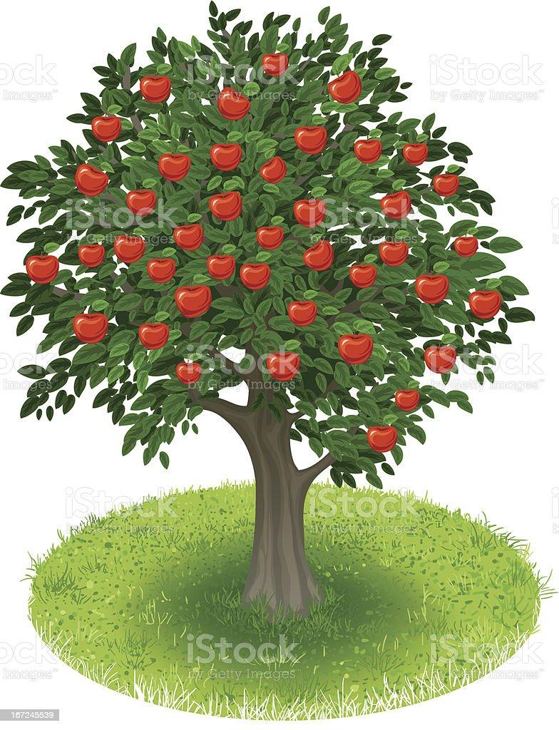 Apple Tree in green field vector art illustration