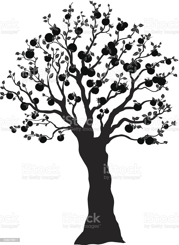 apple tree silhouette pommier ombrag royalty free stock vector art