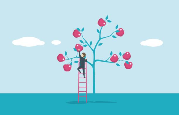 illustrazioni stock, clip art, cartoni animati e icone di tendenza di apple tree - raccogliere frutta